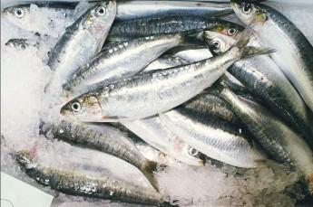 Ustka Restauracja Smażalnia ryb polska ryby i owoce morza Itaka